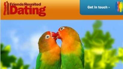two parrots necking
